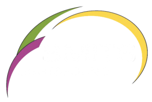 smits l&s-png