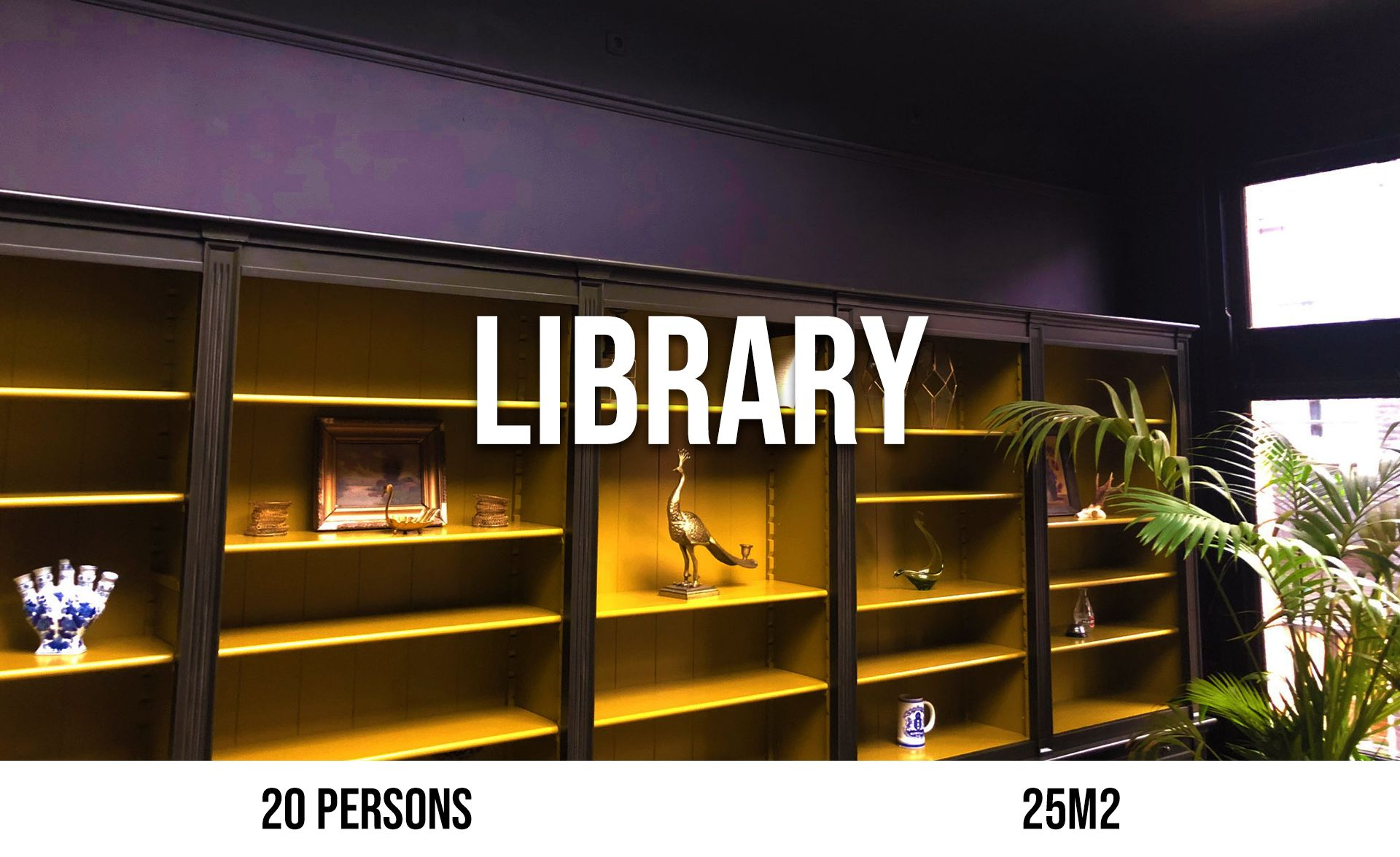 Library (maximum 20 persons, area 25 m²)